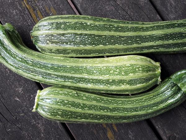 Zucchini Costata Romanesco