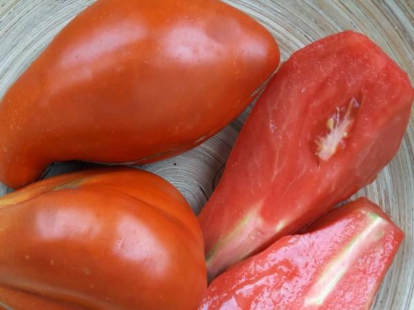 Tomate Beuteltomate