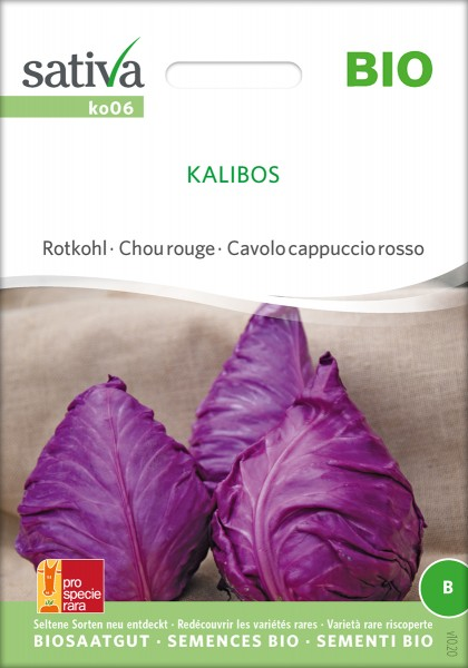 Spitzkohl Kalibos