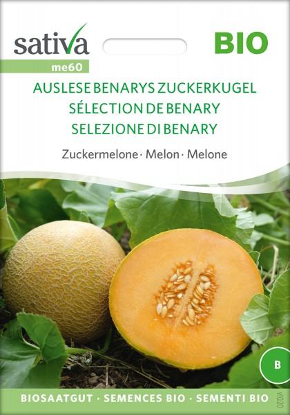 Zuckermelone Benarys Zuckerkugel