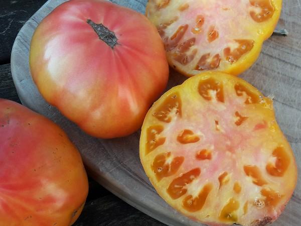 Tomate German Gold / Allemande Dorée