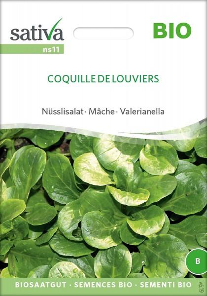 Nüsslisalat, Feldsalat COQUILLE DE LOUVIERS