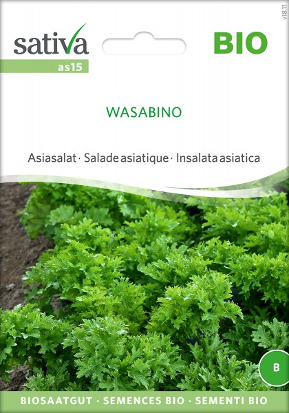 Asiasalat WASABINO