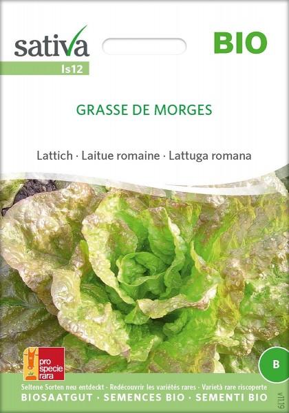 Sommersalat GRASSE DE MORGES