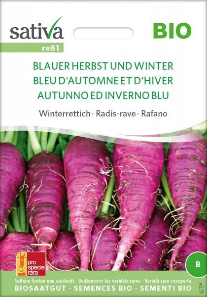 Winterrettich BLAUER HERBST UND WINTER