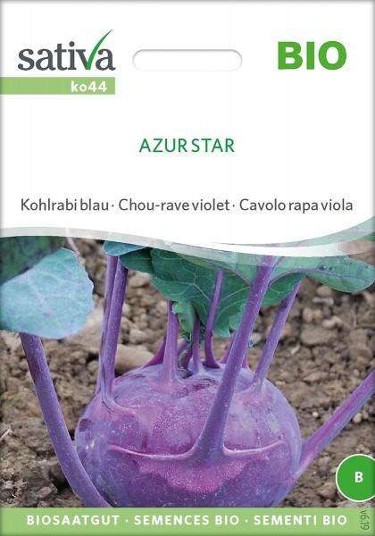 Kohlrabi blau AZUR STAR