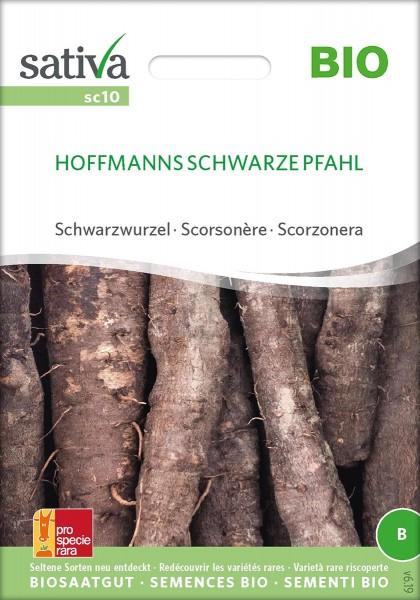 Schwarzwurzel HOFFMANNS SCHWARZE PFAHL