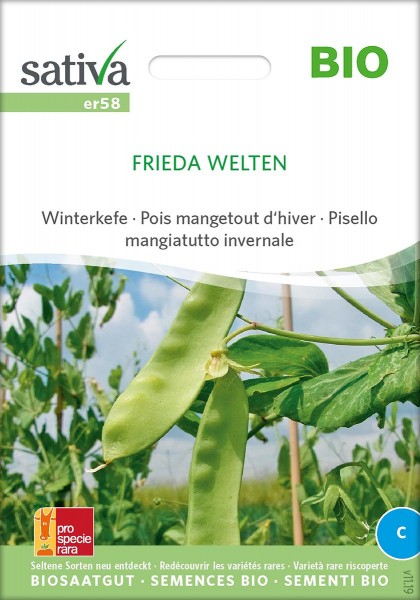 Winterzuckererbse, Winterkefe FRIEDA WELTEN