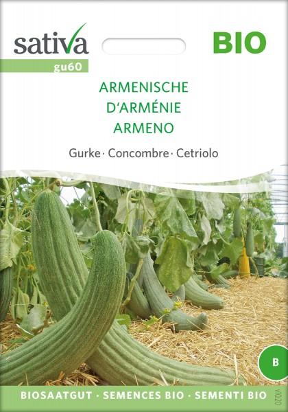 Armenische Gurke, Gurkenmelone