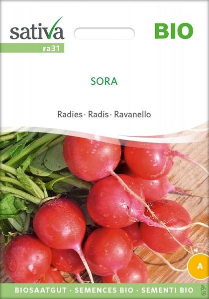 Radies SORA